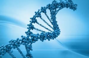 Cadena_ADN